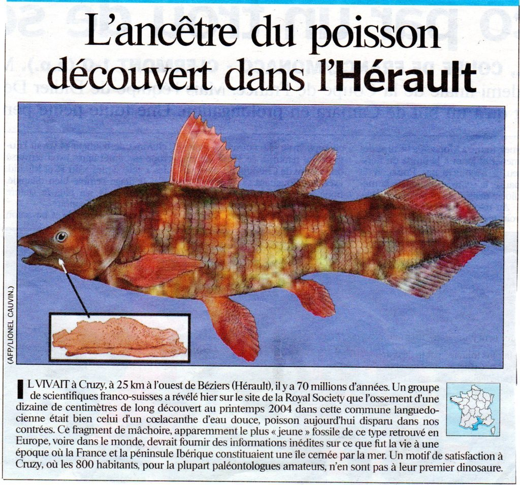 coelacanthe FILEminimizer